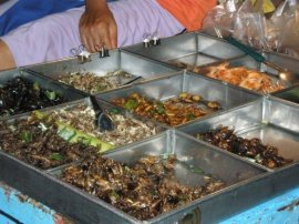 This is my own photo from a visit to Thailand. A whole assortment of roasted insects!
